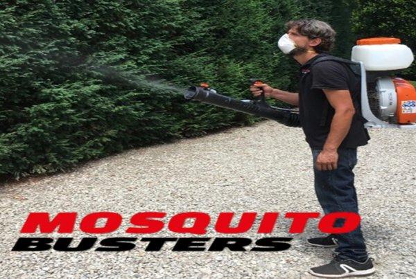 Mosquito Busters, La Pesadilla de los Mosquitos